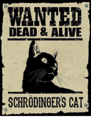 wanted-dead-alive-schrodingers-cat-5562097